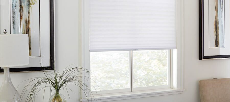 Bella View Legacy Light Filtering Cellular Shade